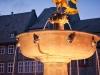 Goslarer Adler -  Foto: goslar marketing gmbh, fotograf stefan schiefer
