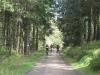 Mountainbiker auf Liebesbankweg