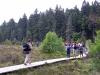 Wanderer im Torfhausmoor