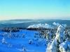 Brockenbahn in Winterlandschaft